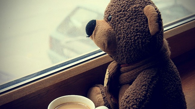 teddy_bear_toy_cup_coffee_window_expectations_mood_54334_1600x1200-1280x720